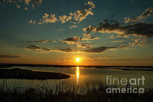 Summer Sunset by Sharon Mayhak