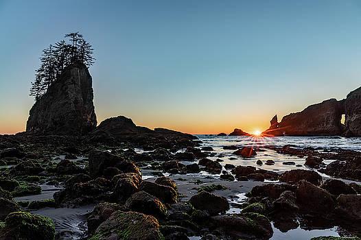 Sunburst at the Beach by Ed Clark