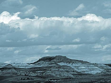 Sundance of the Badlands by Cris Fulton