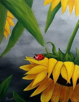 Sunflowers and Ladybug by Danett Britt