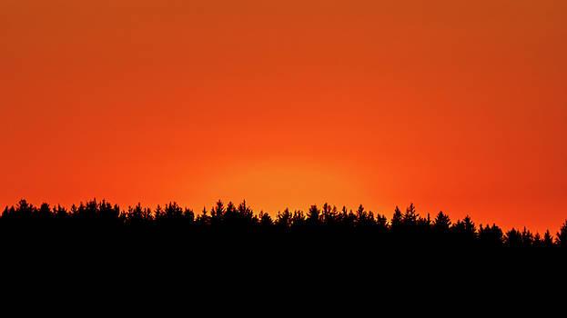 Sunlight Glow Series I V by Debbie Ann Powell