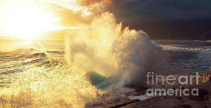 Sunlit Wave - Hawaii by Charmian Vistaunet