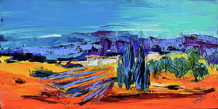 Sunny Provence by Elise Palmigiani