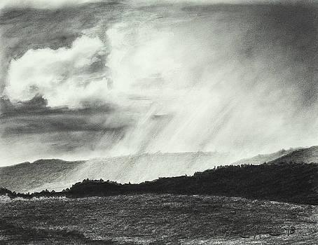 Sunny Rainfall by Lynn Hansen