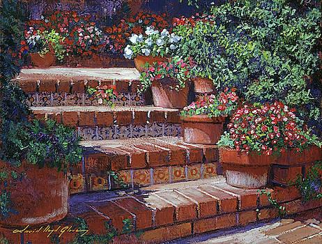 Sunny Steps by David Lloyd Glover