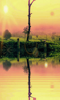 Sunrise by AE collections