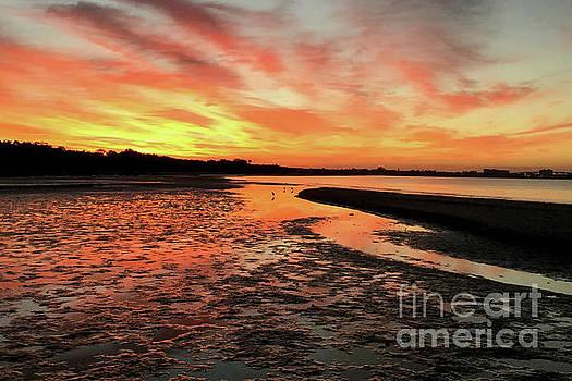 Sunrise at the Beach by Meg Rousher