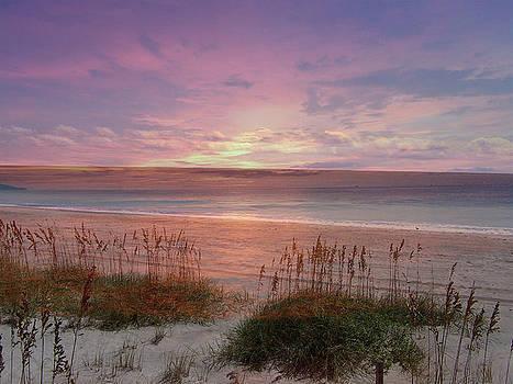 Sunrise At The Beach by Sandi OReilly