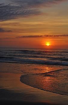 Sunrise Corolla NC by William Fox