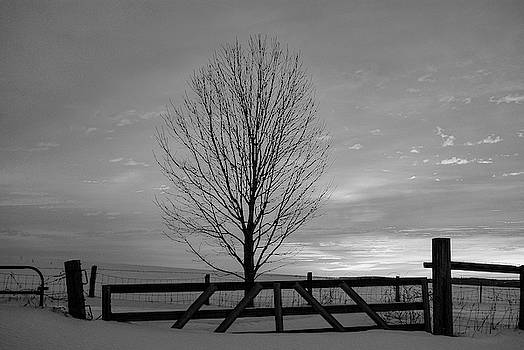 Sunrise is black and white by Andrea Swiedler