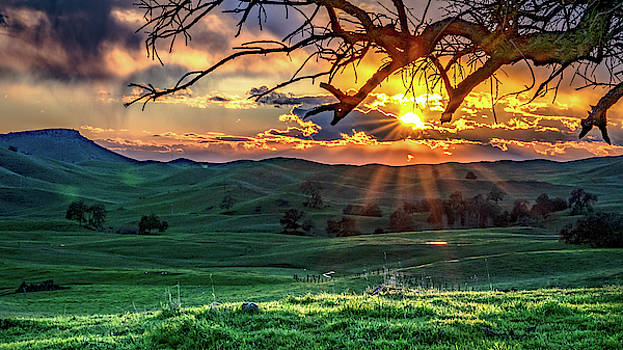 Sunrise on the ranch by Dave Prendergast