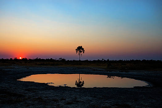 Sunrise Over The Watering Hole by John Rodrigues
