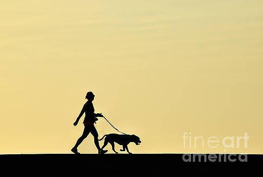 Sunrise Stroll by Diane LaPreta