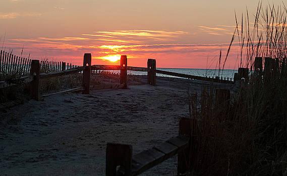 Sunrise Surprise by Sharon Mayhak