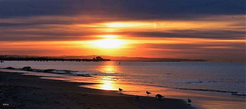 Sunrise, the Belmont Pier by John R Williams