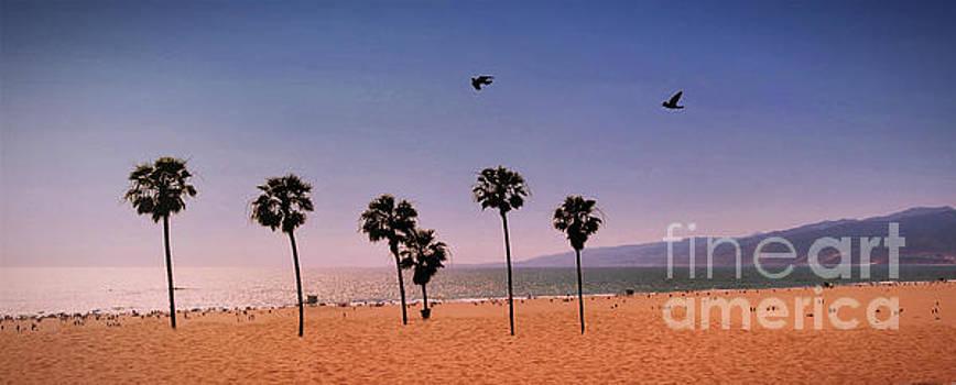 Diann Fisher - Sunset Beach Panoramic Vignette