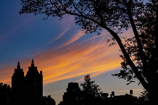 Sunset Clouds Trees and Skyline NYC by Robert Ullmann