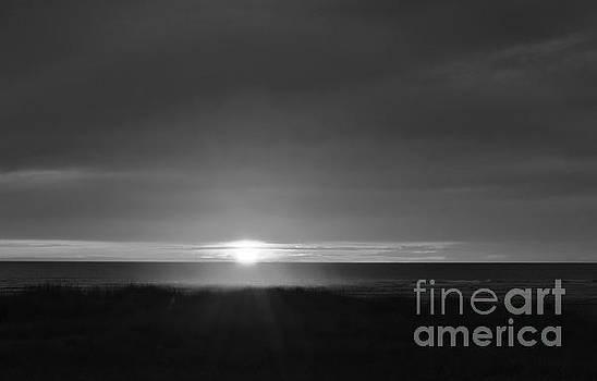 Sunset Horizon  by Jeni Gray