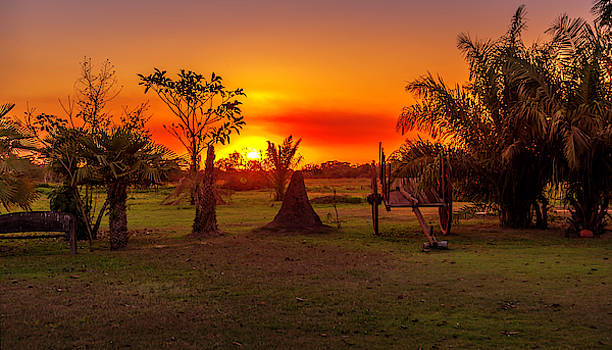 Pravine Chester - Sunset in the Pantanal