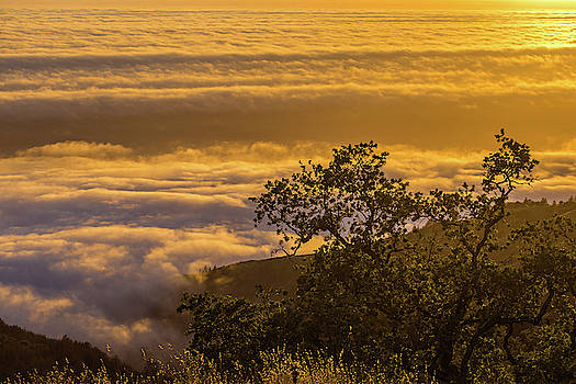 Julieta Belmont - Sunset over the clouds, Los Padres National Forest, California