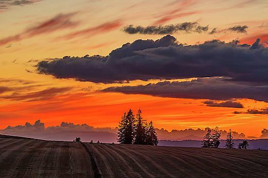 Sunset over the fields by Ulrich Burkhalter