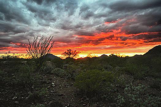 Chance Kafka - Sunset over the Tucson Mountains