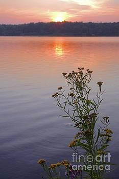 Sunset Serenity by Sandra Updyke
