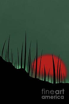 Benjamin Harte - Sunset silhouette