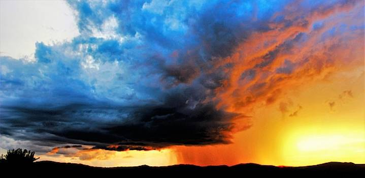 Sunset Storm by Candice Trimble