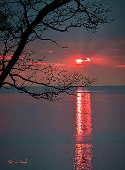 Sunset Stripes by Rebecca Samler