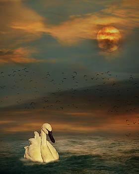 Sunset Swim by Rebecca Cozart