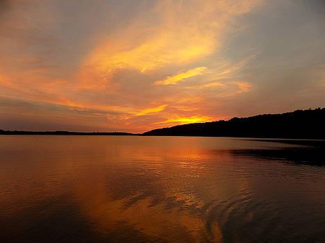 Sunset Swirl by Susan Janus