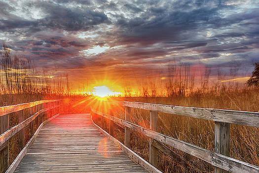 Sunset Walk by Russell Pugh