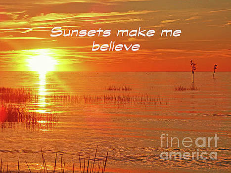 Sharon Williams Eng - Sunsets Make Me Believe Poster 300