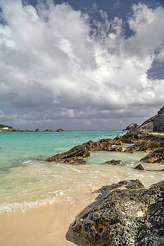 Sunshine Daydream Bermuda by Betsy Knapp