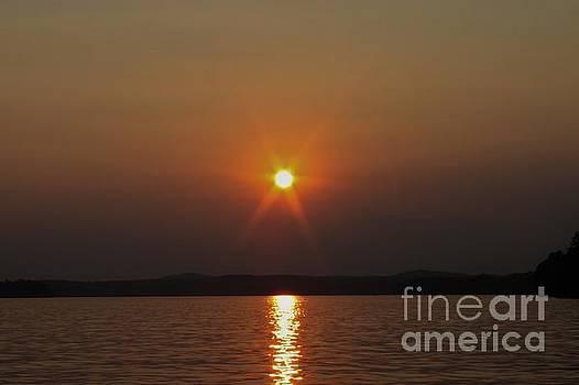 Sunstar by Angela Stafford