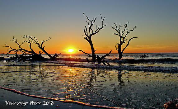 SunsUp by Ree Reid