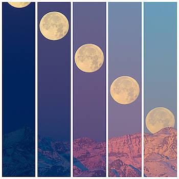 Super Luna mosaico by Emanuele Balboni
