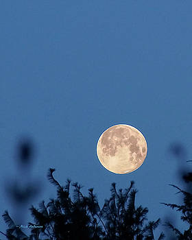 Super Moon Setting by Mick Anderson