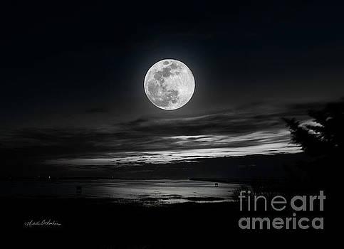 Michelle Constantine - Super Worm Equinox Full Moon