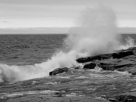 Superior Splash by Alison Gimpel