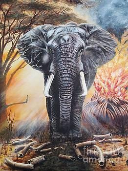 Mtumishi Survivor by Terry Berg
