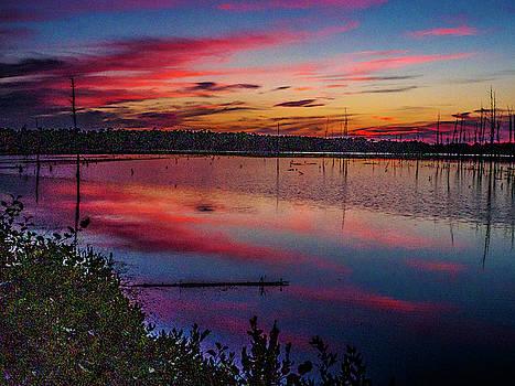 Louis Dallara - Sunset in the Pines Lands