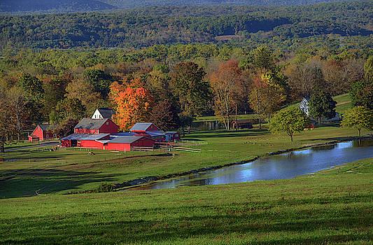 Sussex County Farm by Eleanor Bortnick