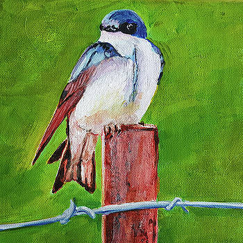 Swallow on a Fence Post by Phyllisha Hamrick
