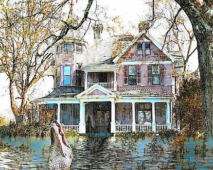 Swamp House by Pennie McCracken