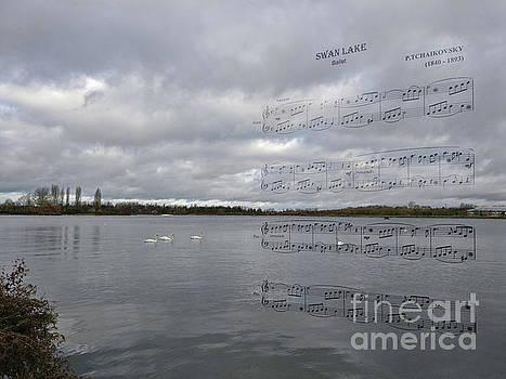 Swan Lake by Galina Lavrova