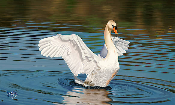 Swan  by Robert Bovasso