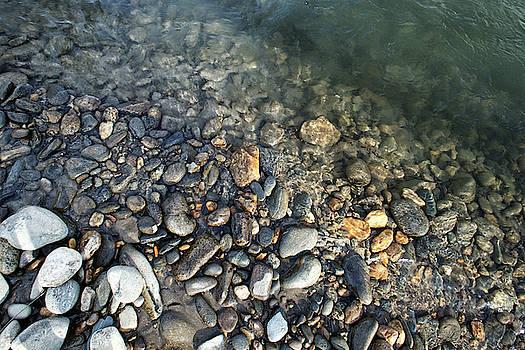 Swannanoa River Study 2 by Dan Simpson
