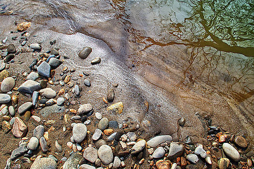 Swannanoa River Study 5 by Dan Simpson